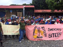 150213-costa-rica-huelga bananera-600x449